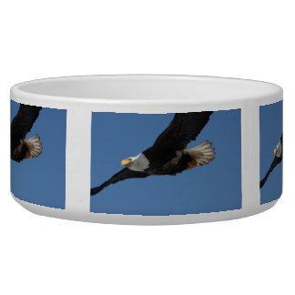 BMIS Bald Eagle on a Mission Bowl