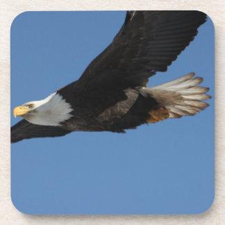 BMIS Bald Eagle on a Mission Coaster