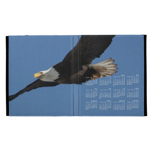 BMIS Bald Eagle on a Mission iPad Cases