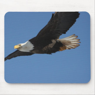 BMIS Bald Eagle on a Mission Mouse Pad