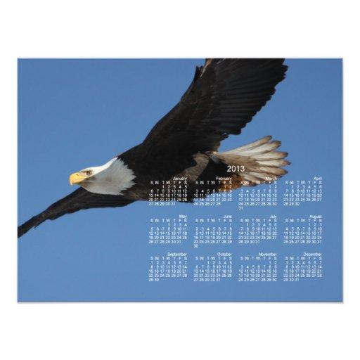 BMIS Bald Eagle on a Mission Photo Print