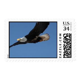 BMIS Bald Eagle on a Mission Postage Stamp