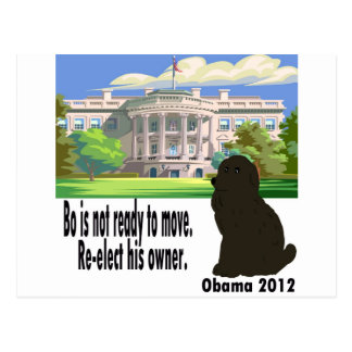 Bo Is Not Ready to Move Postcard