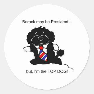 Bo is Top Dog Sticker