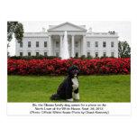 BO la postal del perro de la familia de Obama