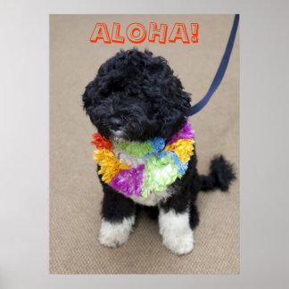 Bo Obama - Aloha Poster