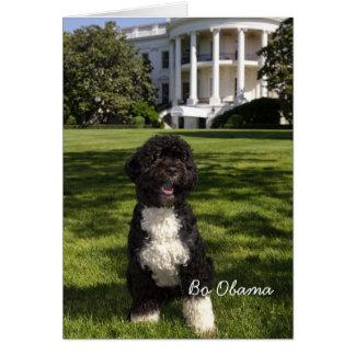 Bo Obama Card