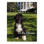 BO Obama Postales