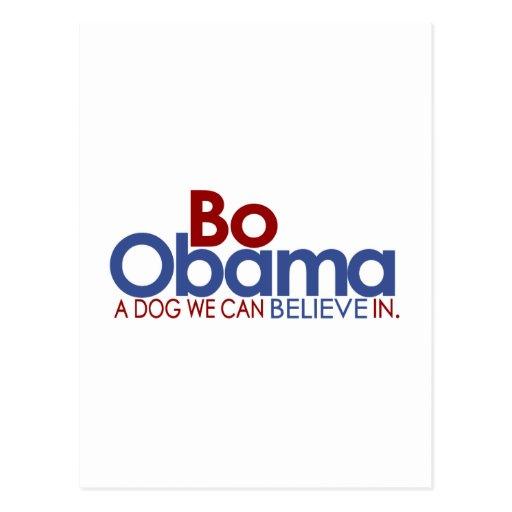 Bo Obama the Dog Postcards