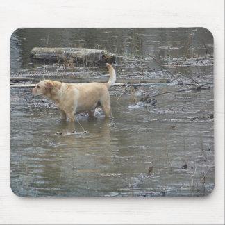 Bo the Water Dog Mousepad
