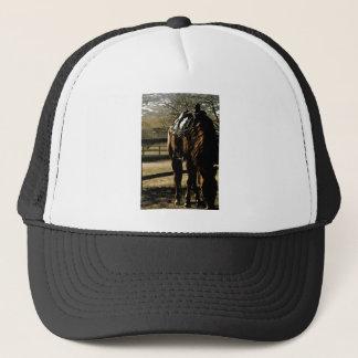 Bo Trucker Hat