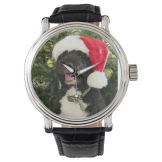 Bo waiting for Santa - Watch