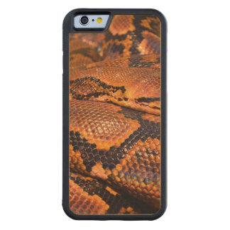 Boa Constrictor Carved Maple iPhone 6 Bumper Case