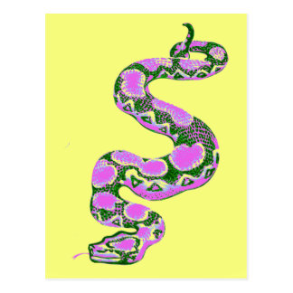 Boa Constrictor Pop Art Postcard