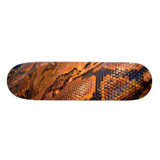 Boa Constrictor Skateboard