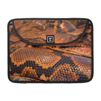 Boa Constrictor Sleeve For MacBooks