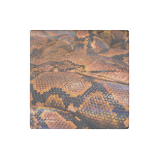 Boa Constrictor Stone Magnet
