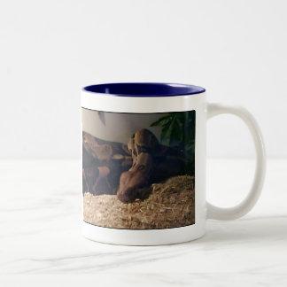 boa constrictor Two-Tone coffee mug