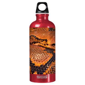 Boa Constrictor Water Bottle