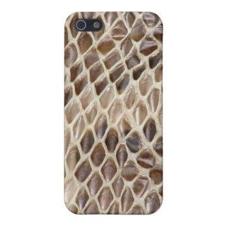 Boa de la piel de serpiente iPhone 5 carcasas