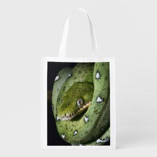 Boa esmeralda de la serpiente verde del árbol en B Bolsa Para La Compra
