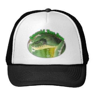 boa esmeralda del árbol gorra