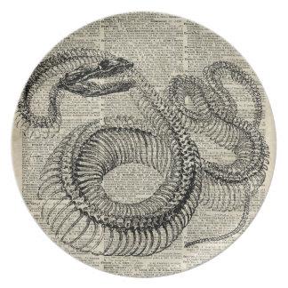 Boa Snake Skeleton Vintage Dictionary Page Art Plate