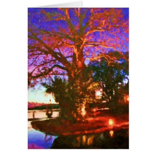 Boabob Tree Card