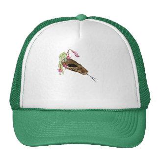 Boacontrictor hace frente al gorra