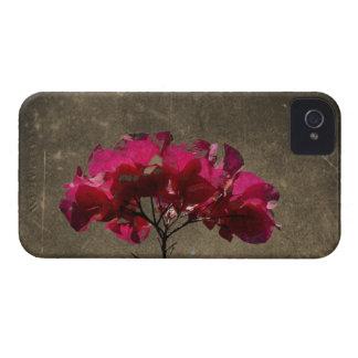 BOAN Bougainvillea Antique Blackberry Case