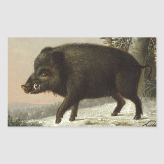 Boar Pig Vintage German Painting Rectangular Sticker