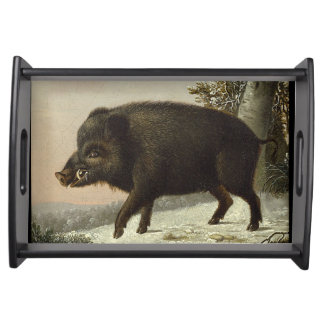 Boar Pig Vintage German Painting Serving Tray