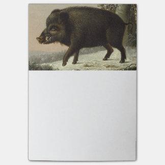 Boar Pig Vintage German Painting Post-it® Notes