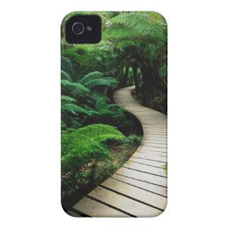 Board Walk iPhone 4 Case-Mate Case