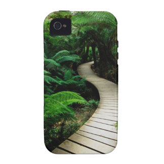 Board Walk Vibe iPhone 4 Cases