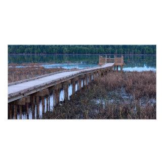 Boardwalk Above Bog in Bloomington Refuge Card