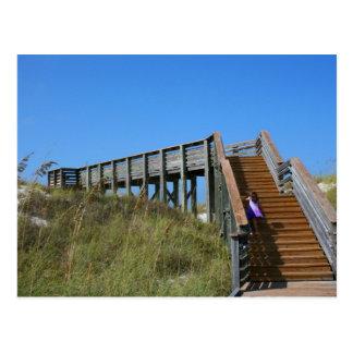 Boardwalk, Florida, Cape San Bur beach picture Postcard