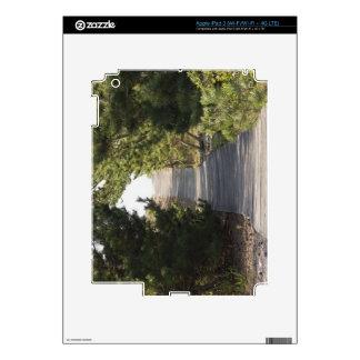 Boardwalk footpath through evergreen iPad 3 skin
