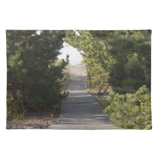 Boardwalk footpath through evergreen cloth place mat