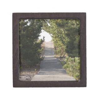 Boardwalk footpath through evergreen premium keepsake box