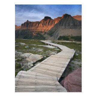 Boardwalk in Waterton Glacier International Post Card