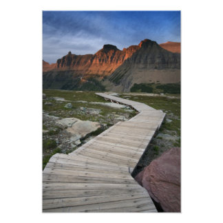 Boardwalk in Waterton Glacier International Poster