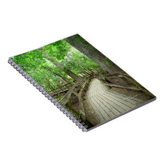 Boardwalk path in cypress forest Notebook