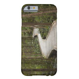 Boardwalk to Nelson Falls, Franklin - Gordon Barely There iPhone 6 Case