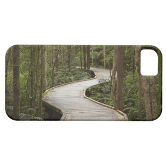 Boardwalk to Nelson Falls, Franklin - Gordon iPhone 5 Covers
