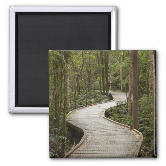 Boardwalk to Nelson Falls, Franklin - Gordon Magnet