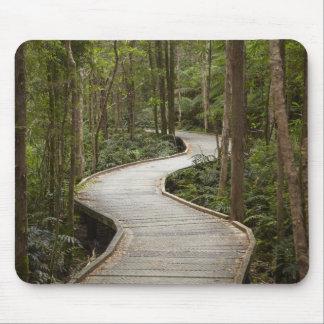 Boardwalk to Nelson Falls, Franklin - Gordon Mouse Pad