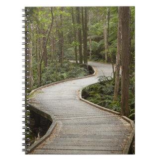 Boardwalk to Nelson Falls, Franklin - Gordon Spiral Notebook