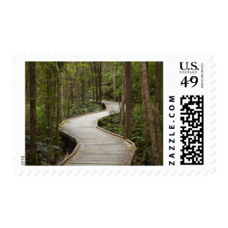 Boardwalk to Nelson Falls, Franklin - Gordon Postage