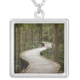 Boardwalk to Nelson Falls, Franklin - Gordon Silver Plated Necklace